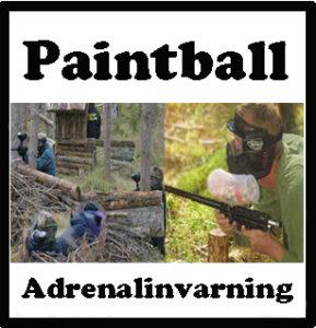 paintball paintballtorpet piteå